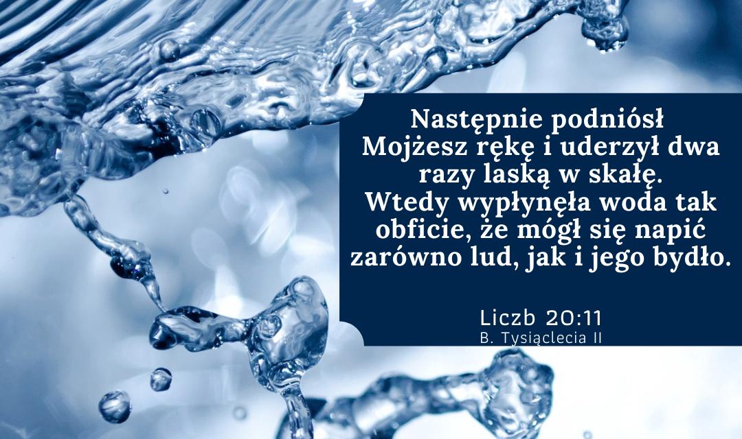 Księga Liczb 20:11