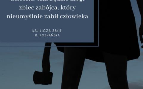 Księga Liczb 35:11