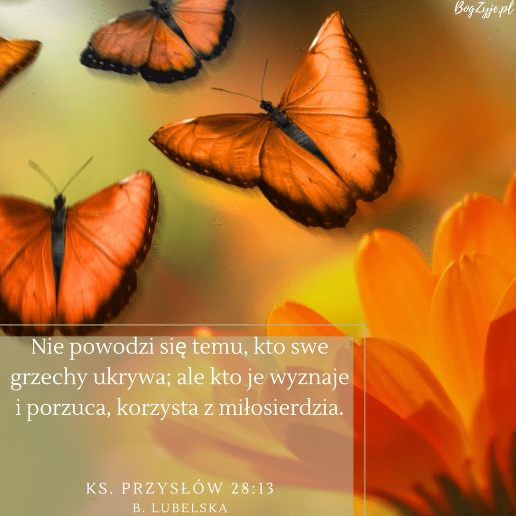 Księga Przysłów 28:13