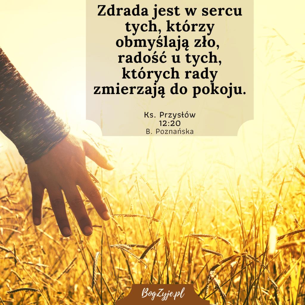Księga Przysłów 12:20