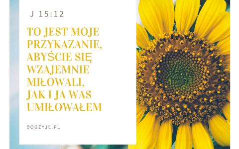 Jana 15:12