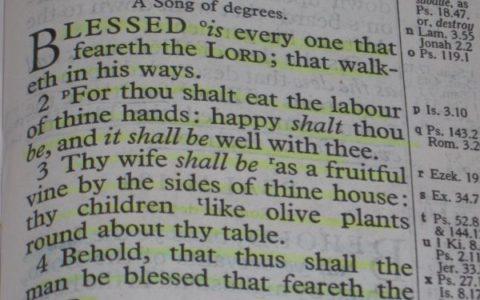 Księga Psalmów rozdział 128 / fot. Pininterest