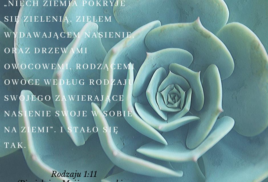 Księga Rodzaju 1:11 [chiazm]