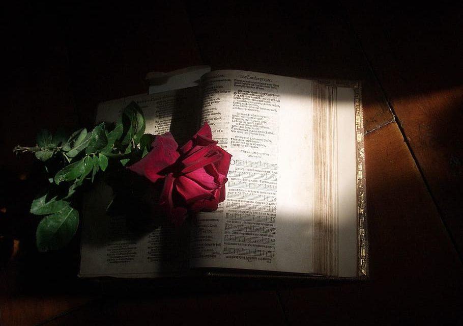 1050 przykazań Jezusa Chrystusa / fot. pxfuel.com