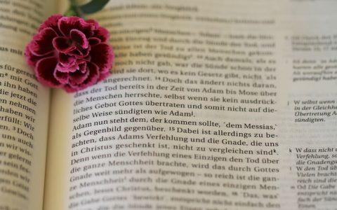 List do Rzymian 1:8 [komentarze]