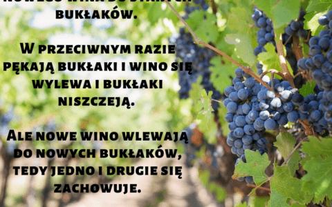 Mateusza 9:17: 17. Ani też nie wlewa się nowego wina w stare bukłaki. Bo inaczej, skóry pękają, wino się wyleje, a bukłaki są niszczone. Nie, nowe wino wlewa się do nowych bukłaków i obie rzeczy są zachowane.