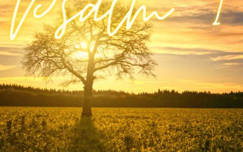 Psalm 1 [wideo]. Słowa po angielsku i po polsku