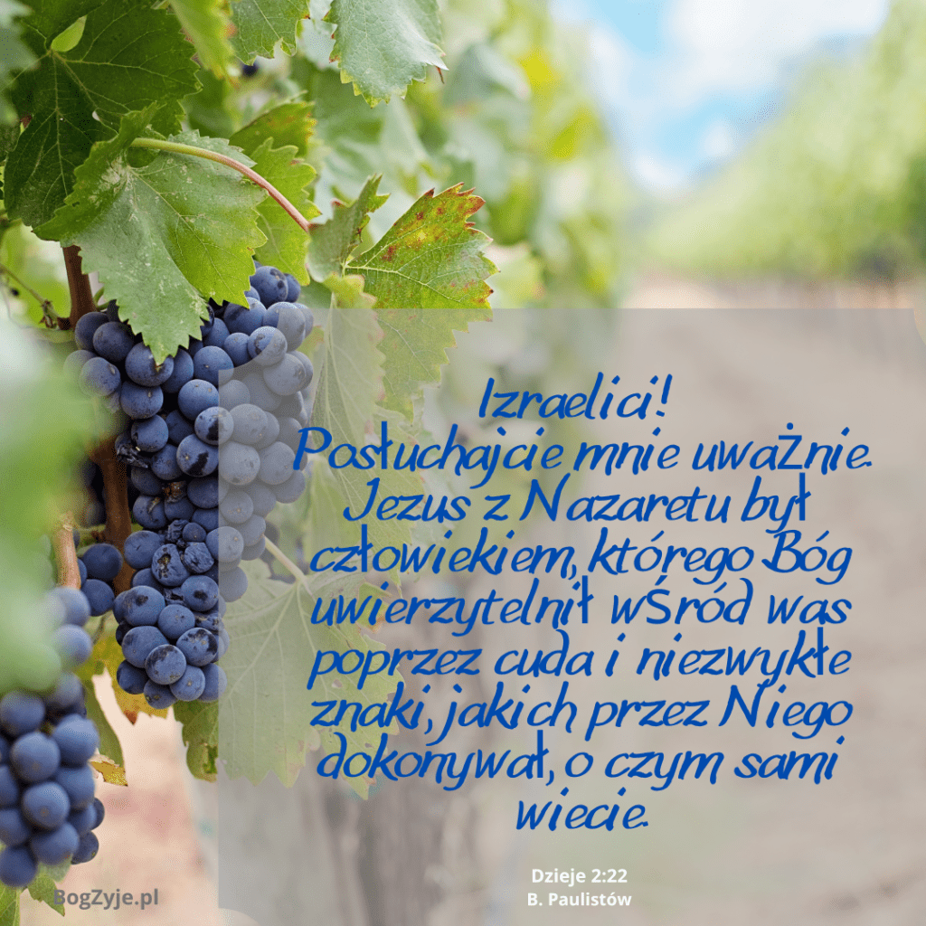 Dzieje Apostolskie 2:22 / artykuł: Czy apostoł Piotr wierzył w Trójcę?
