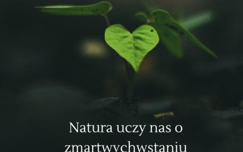 Natura a zmartwychwstanie