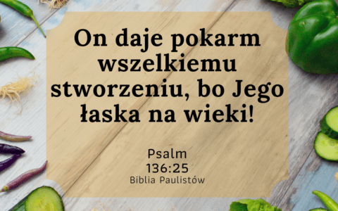 Psalm 136:25