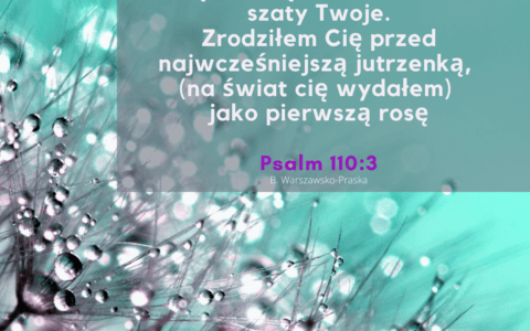 Psalm 110:3