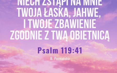 Psalm 119:41