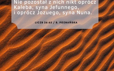 Księga Liczb 26:62