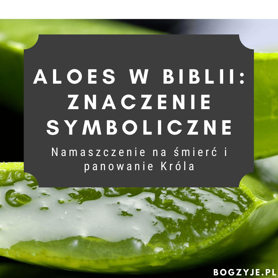 Aloes w Biblii